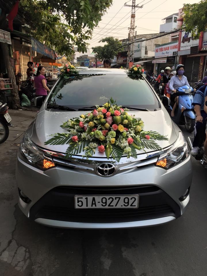Xe Toyota VIOS 5 Chỗ